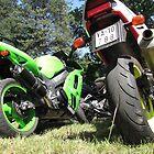 Motorbikes in grass by branko stanic