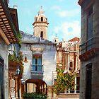 Catedral de La Habana by Dominica Alcantara