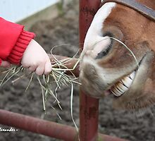 Toddler feeding a horse by MindsImage