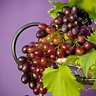 My Grapes by Paul Bovolos