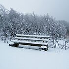 snow covered bench  by Joyce Knorz