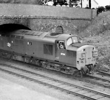 Old Class 37 Diesel by Edward Denyer