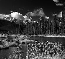 Vermillion Lakes, Banff National Park, Alberta, Canada by hinomaru