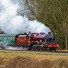 Leander - Loco 5690 by Hertsman