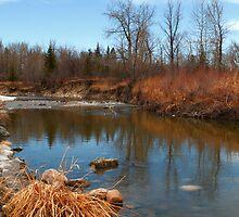 Little creek by zumi