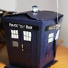 chinese box TARDIS by apam