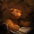 Old Bear Photograph Lonely Forgotton In An Attic by Moonlake