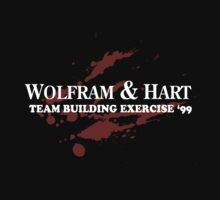 Wolfram and Hart - Team Building Exercise by mr-tee
