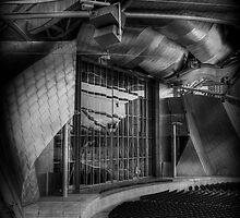 Jay Pritzker Pavilion by Joe Thill