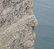 Cliff Face by neon-gobi