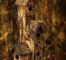 Home Sweet Home by pat gamwell