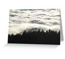 In the Midst of Giants -  Sequoia National Park, California Greeting Card
