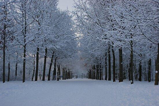 Winter wonderland by Lindie