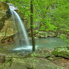 Jackson Falls by David Allen