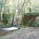 The Historic Powerhouse Spillway by Edith Farrell
