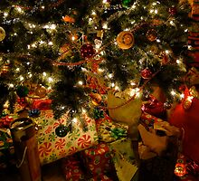 Christmas Morning Magic by Lynn Armstrong