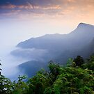 Sunrise Bandipur by David Lewins
