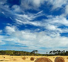 The Bales Revisited by Garth Smith