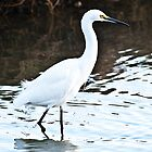 great egret by marianne troia