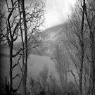 dragon dust by Bronwen Hyde