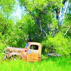 Dodge II - Forgotten Beauties Collection - Montana by Monica DeShaw