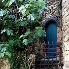 Hobbit's house, St Tropez by BronReid