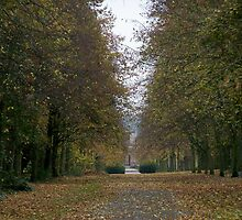 Lime Tree Avenue by JJsEscape