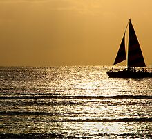 Sunset Sail 1 by David Chappell