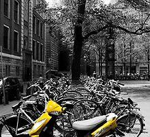 Yellow by AlisonOneL