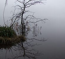 Reflections on the loch in the fog 2 by Kim  Ayres