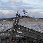Climbing Fences To Frozen Fields by Tracy Faught