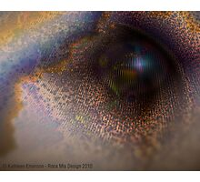 Visionary (Enlightenment) Photographic Print