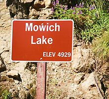 Lake Mowich, Washington by donnah