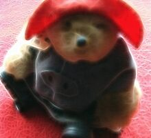 Paddington Bear by vigor