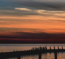 Sundown at the Bay by larie200