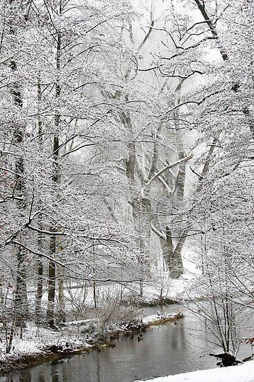 winter by wistine