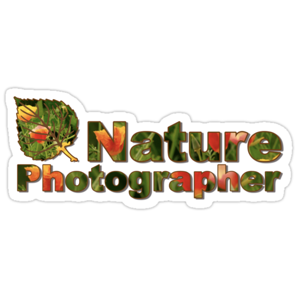 Nature Photographer T by Richard G Witham