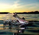 Lake Memories by Brian Pelkey
