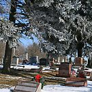 Little Country Cemetery by kkphoto1