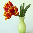 parrot tulips in green vase by OldaSimek
