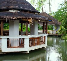 Floating Restaurant by SharonJH