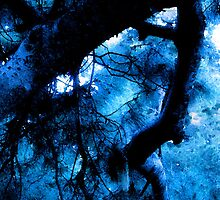 Haunted Landscape/Mindscape – Abstracted Gnarled Branches and Trees in Blue – February 4, 2010 by Ivana Redwine