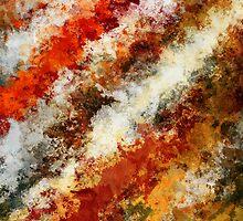 Meteor Shower by Nico  van der merwe