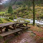 Tables by the River by ccaetano