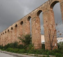 Aqueduct Ruins in Tunis by Laurel Talabere