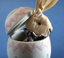 Bunny in Egg by SteveOhlsen