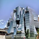 Weisman Art Museum, Minneapolis by shutterbug2010