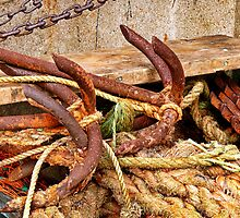 Rusty Anchors ~ Lyme Regis by Susie Peek
