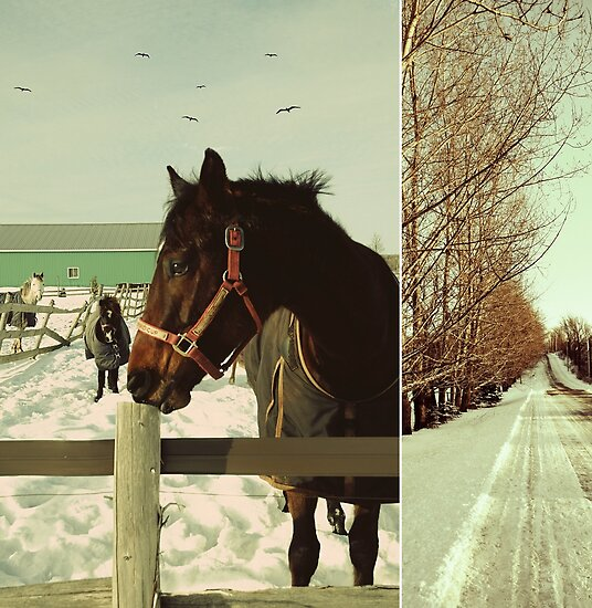 Winter Horses II by Louise Fahy