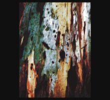 Coloured Bark by George Hunter